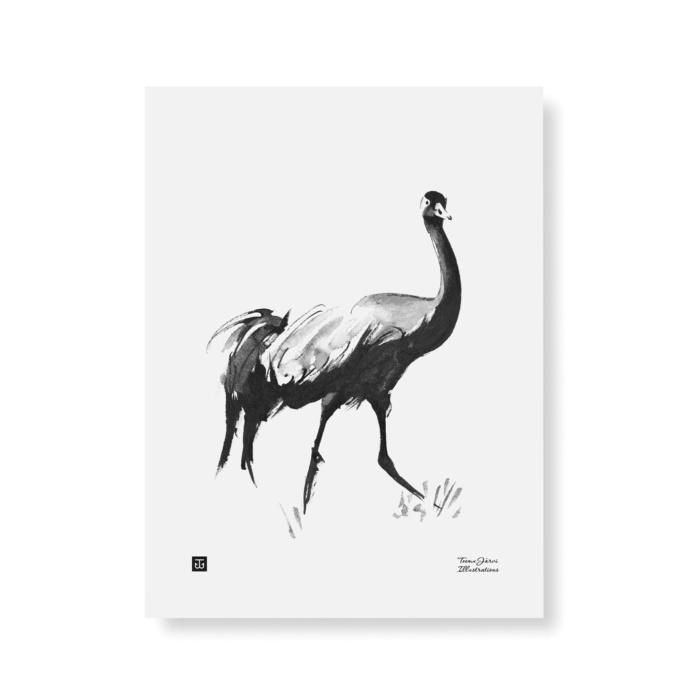 crane art print poster by teemu jarvi