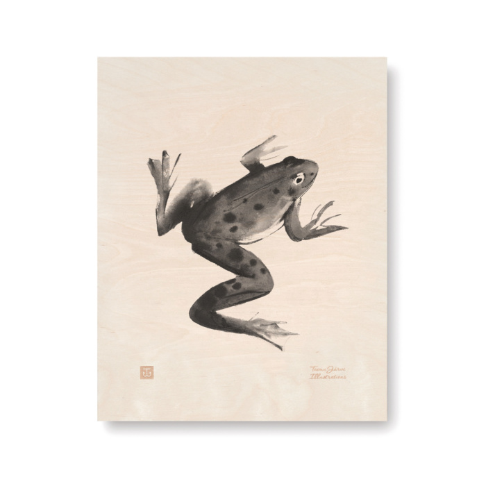 frog plywood art print poster by teemu jarvi