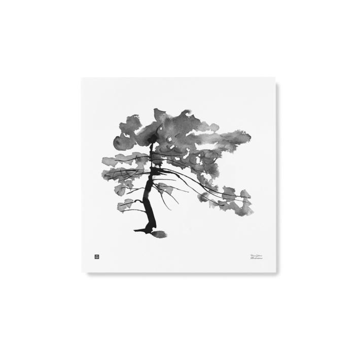 pine tree art print poster by teemu jarvi