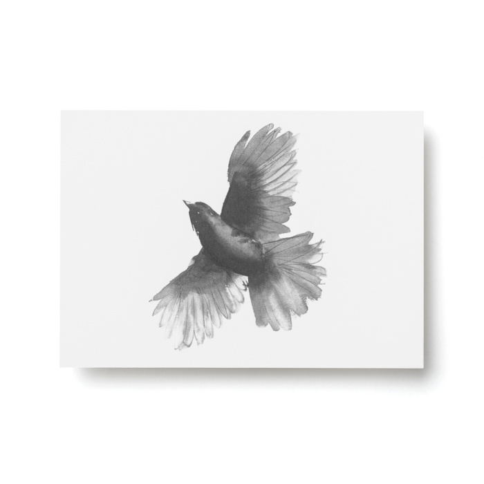 siberian jay postcard art print by teemu jarvi
