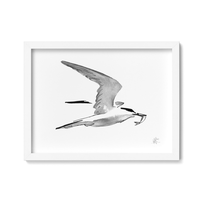 tern framed wall art