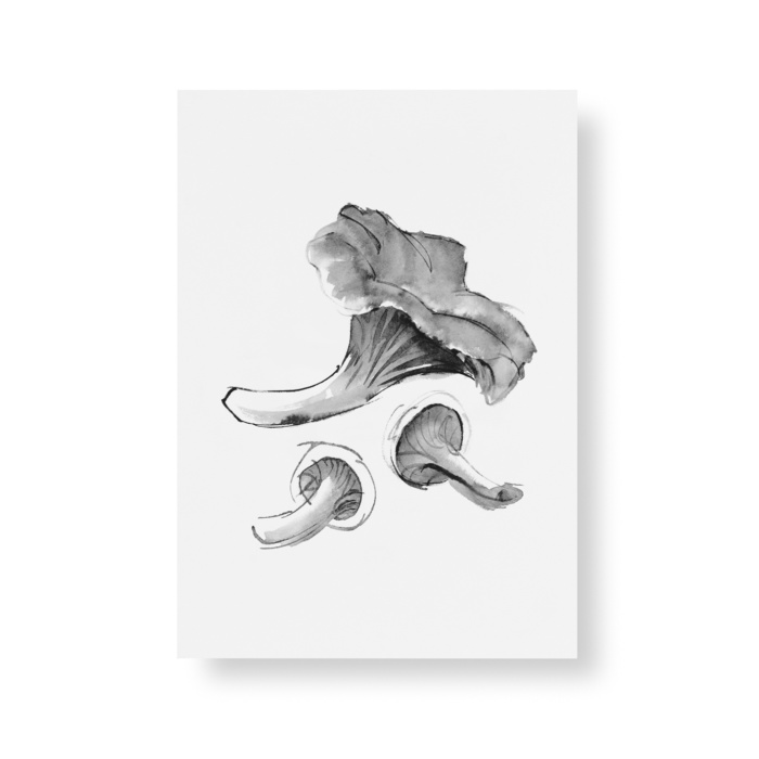 chantarelle mushroom postcard art print