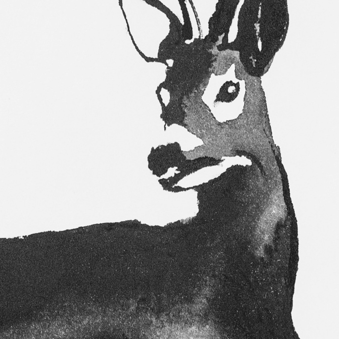 Black & white deer poster