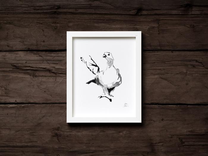 Black & White grouse fine art print