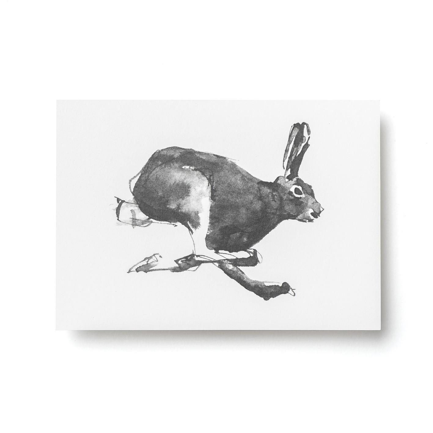Jänis-postikortti