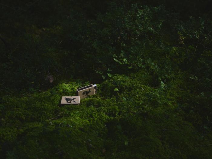 hare matchbox by teemu jarvi
