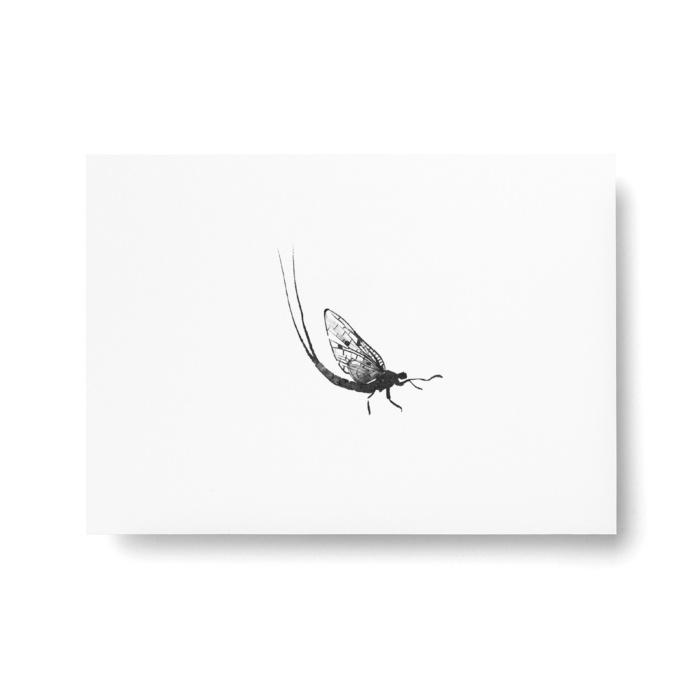 mayfly postcard art print by teemu jarvi