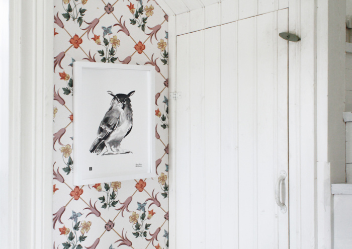 Owl framed wall art