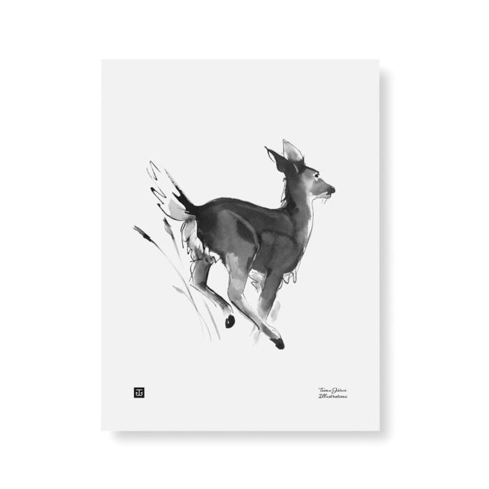 Black & white white tailed deer poster