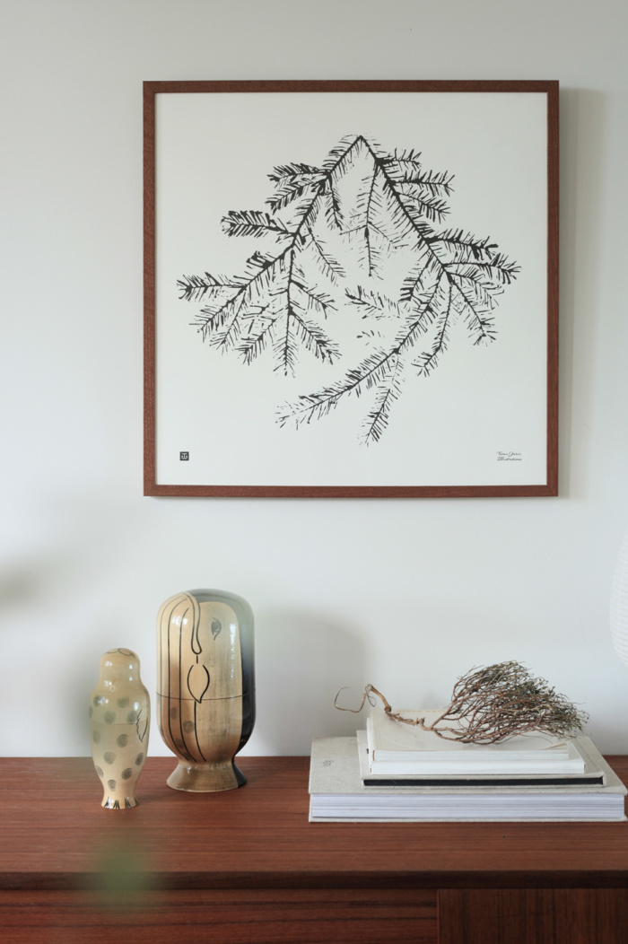 Black & white Spruce Branch poster