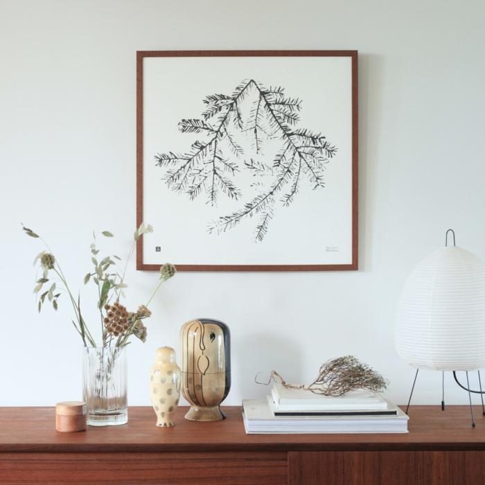 Black & White spruce branch art print