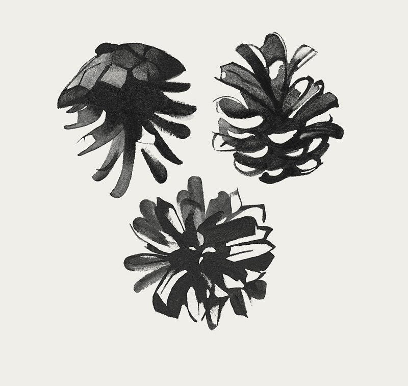 Black & White cones print