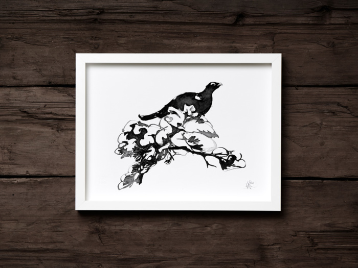 Winter Capercaillie framed wall art