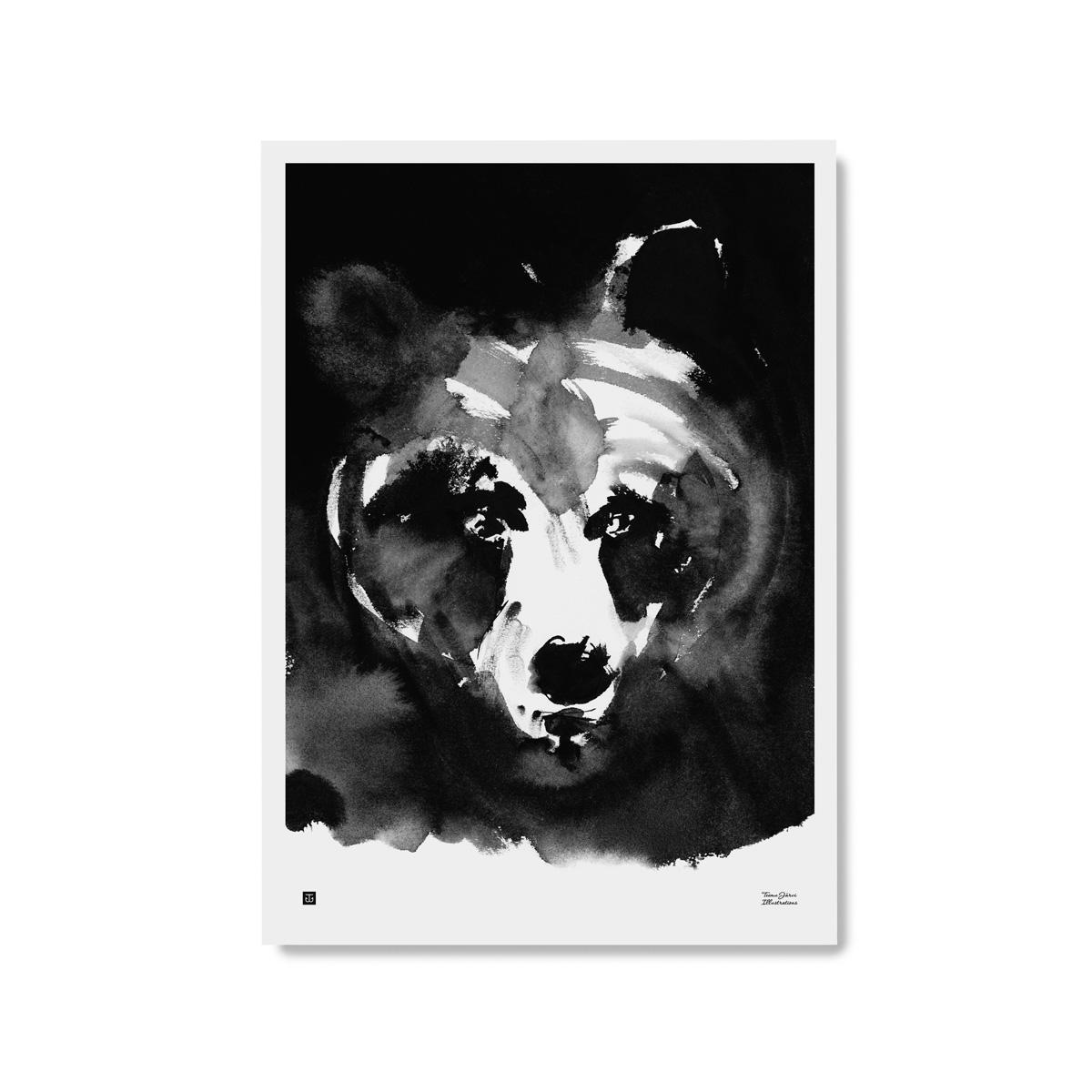 Salaperäinen karhu -juliste