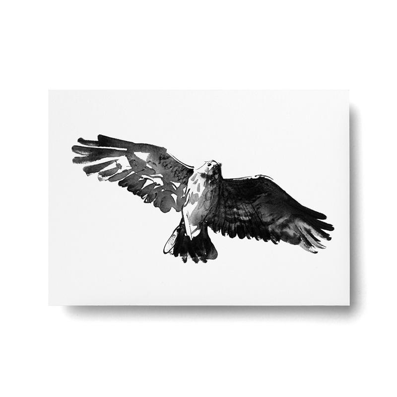 Haukka-postikortti
